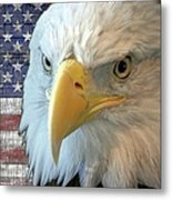 Spirit Of America Metal Print