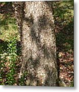 Spirit Of The Tree-6 Metal Print