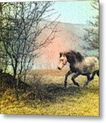 Spiritus Equus Metal Print