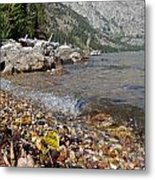 Splash Lake Jenny Metal Print