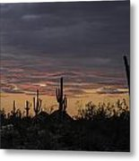 Splender At Sunset Metal Print