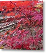 Splendid Fall Metal Print by Valia Bradshaw