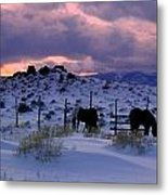 Splendor Of Winter  Metal Print