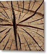 Split Wood Metal Print by Art Block Collections