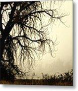 Spooky Tree Metal Print