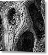 Spooky Tree Metal Print