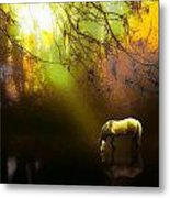 Spot Light  Metal Print