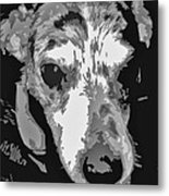 Spotted Dog Black And White Metal Print