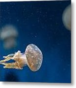 Spotted Jelly Aliens 2 Metal Print
