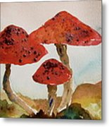 Spotted Mushrooms Metal Print