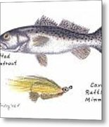 Spotted Seatrout And Rattlin' Minnow Fly Metal Print