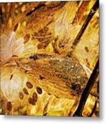 Spray Of Sienna Metal Print