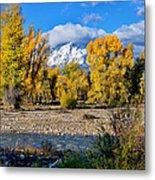 Spread Creek Grand Teton National Park Metal Print