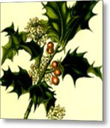Sprig Of Holly With Berries And Flowers Vintage Poster Metal Print