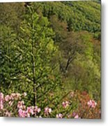 Spring Along The Blue Ridge Metal Print