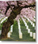 Spring Arives At Arlington National Cemetery Metal Print by Susan Candelario