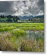 Spring At Dry Lagoon 1 Metal Print