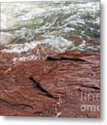 Spring At Sedona In Spring Metal Print