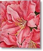 Spring Azalea Metal Print