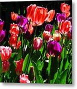 Spring Blossom 5 Metal Print