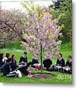Spring Blossom In Kew Gardens London Metal Print
