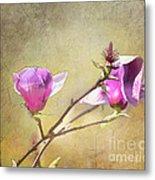 Spring Blossoms - Digital Sketch Metal Print
