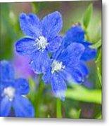 Spring Blue Metal Print