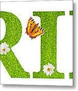 Spring Butterflies Metal Print