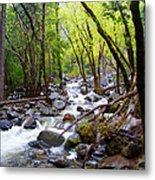Spring Cascade Of Water From Bridal Veil Falls In Yosemite Np-2013 Metal Print