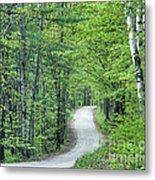 Spring Country Road Metal Print