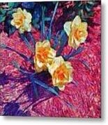 Spring Daffodils On Red - Horizontal Metal Print