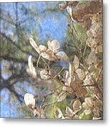 Spring Fancies 4 Metal Print
