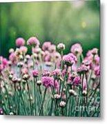 Spring Floral Background Metal Print