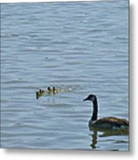 Spring Flotilla With Guardians Metal Print
