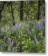 Spring Flowers In The Columbia Gorge Metal Print