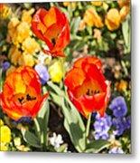 Spring Flowers No. 3 Metal Print