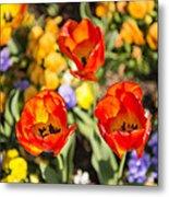 Spring Flowers No. 4 Metal Print