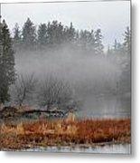Spring Fog Metal Print