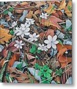 Spring Forward Metal Print
