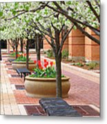 Spring Fragrance Metal Print