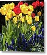 Spring Garden Sunshine Square Metal Print