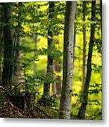 Spring Green Vertical Forest  Metal Print