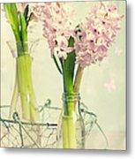 Spring Hyacinths Metal Print