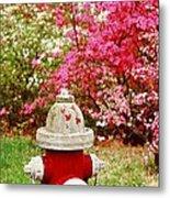 Spring Hydrant Metal Print