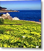 Spring In Pacific Grove Ca Metal Print