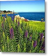 Spring In Pacific Grove Ca Two Metal Print