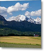 Spring In The Alps Metal Print