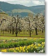 Spring In The Hood River Valley Metal Print