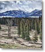 Spring In The Wallowas Metal Print