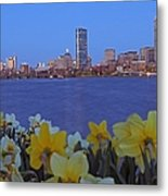 Spring Into Boston Metal Print